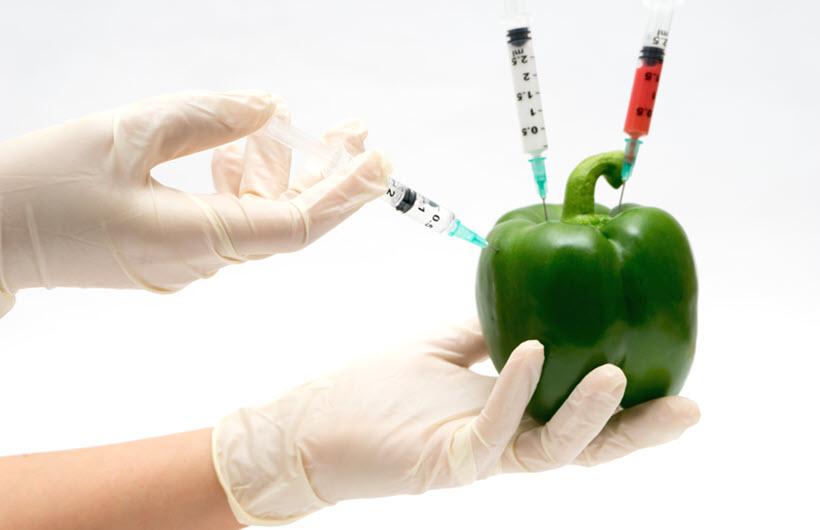 bio GMO